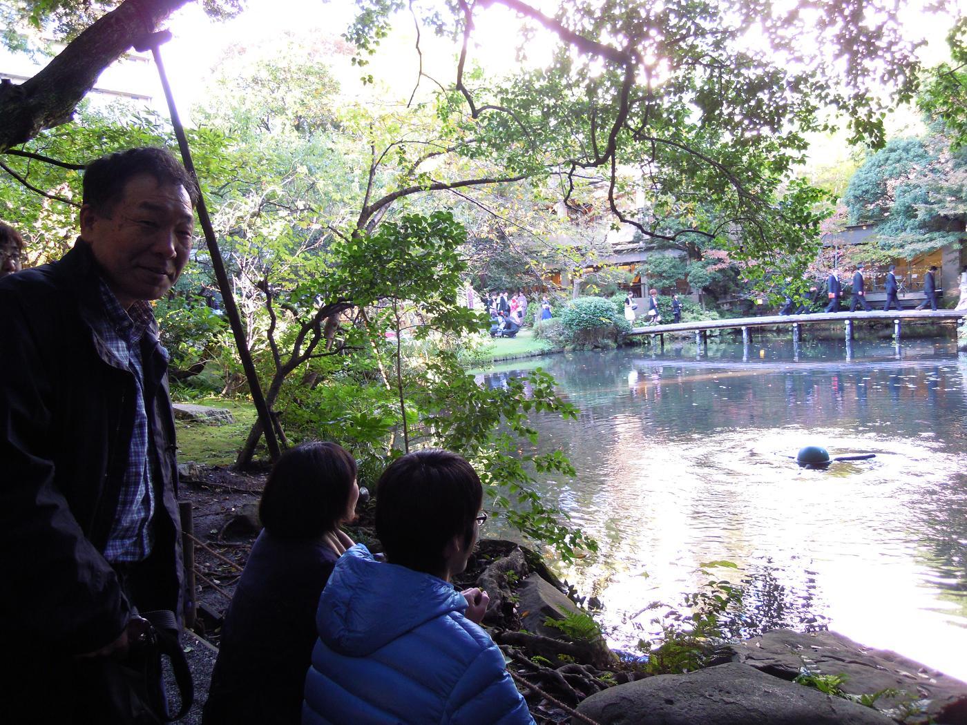 2011 11 剪定10
